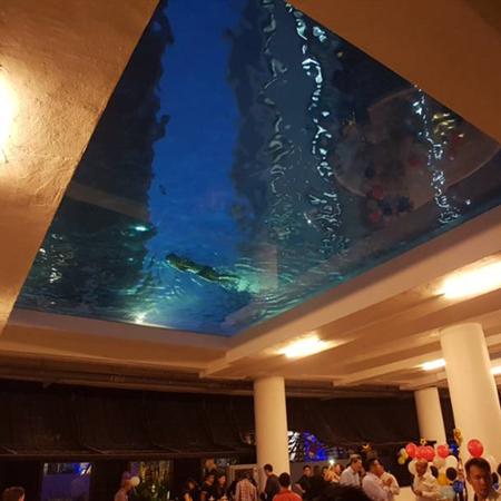 透明游泳池